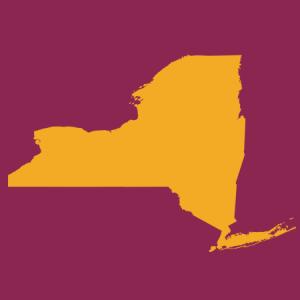 SUNY Community Course Cohort Icon