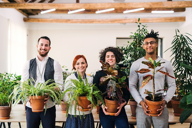 Four people holding houseplants
